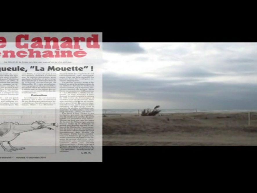 Journal Satirique de Montpellier - L'Agglorieuse •